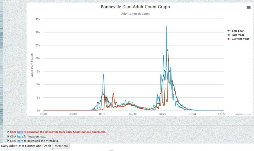 Fall chinook counts at Bonneville Dam as of Sept. 10, 2017. (Fish Passage Center)