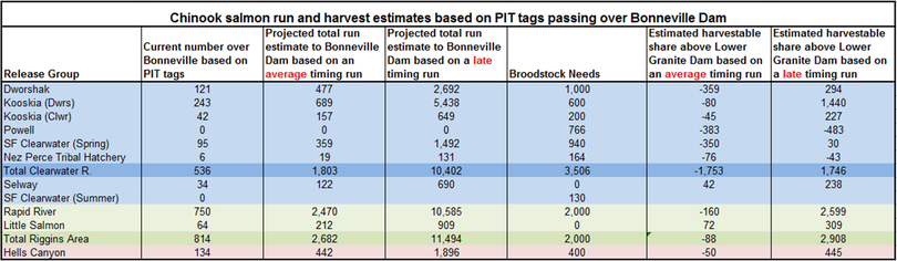 Chart shows chinook salmon run and harvest estimates based on PIT tags passing over Bonneville Dam. (Idaho Department of Fish and Game)