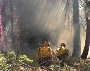 2015 is a busy year for wildfire crews. (Associated Press)