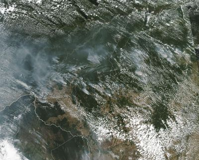 This satellite image from Aug. 13 shows several fires burning in the Brazilian Amazon forest. (NASA)