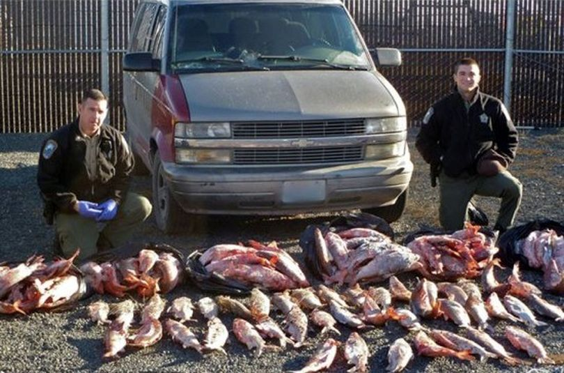 Washington Department of Fish and Wildlife police pose with whitefish they confiscated from an illegal netting operation at Banks Lake on Dec. 6, 2013. (Washington Fish and Wildlife Department)