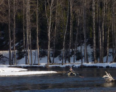 A fly fisherman oars his pontoon down the North Fork Coeur d'Alene River searching for cutthroat trout in January. (Rich Landers)