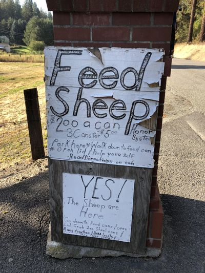 """This sign is part of Julia Ditto's """"sanity walk"""" in Spokane Valley. (Julia Ditto / For The Spokesman-Review)"""