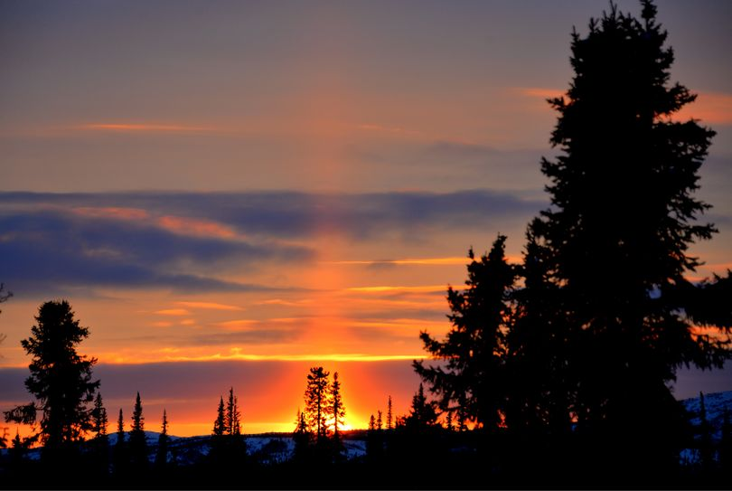 Sunset as seen from the porch of the Tripod Flat BLM Cabin on the Kaltag Portage along the Iditarod Trail.  Back-lit ice crystals cause the dynamic effect in the sky. Josh Rindal of Spokane and Bob Jones of Kettle Falls were snowmobiling 1,400-miles along the route of Alaska's famous Iditarod Sled Dog Race in March 2014. (Robert Jones)