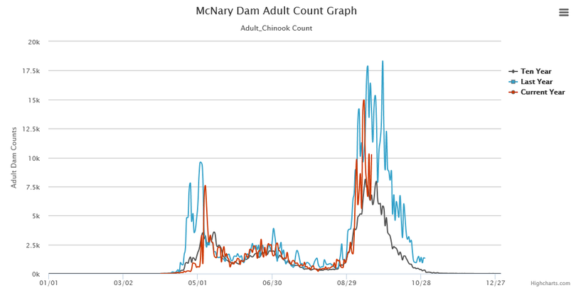 Chinook salmon counts over McNary Dam as the fish enter the Hanford Reach of the Columbia River. (Fish Passage Center)