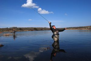 Fly fishing guide George Cook double-hauls a cast on a private trophy trout fishing lake he helps manage at Isaak's Ranch near Coulee City.  (Rich Landers / The Spokesman-Review)