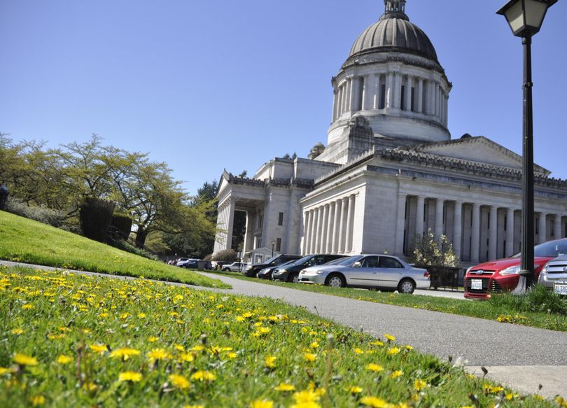 OLYMPIA – The proliferation of dandelions on the Capitol Campus prompted a hearing in the Senate Ways and Means Committee last week. (Jim Camden / The Spokesman-Review)