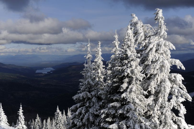 Trees near the top of the mountain are rimmed with snow Tuesday at Mt. Spokane Ski and Snowboard Park.  (Jesse Tinsley)