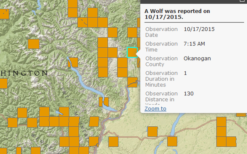 Washington's wolf reporting webpage indicates sightings in the Loup Loup Pass area of Okanogan County.