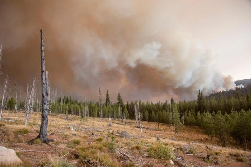 The Pioneer Fire burns into an old burn scar, helping slow its growth, on Saturday, Sept. 3. (Inciweb)