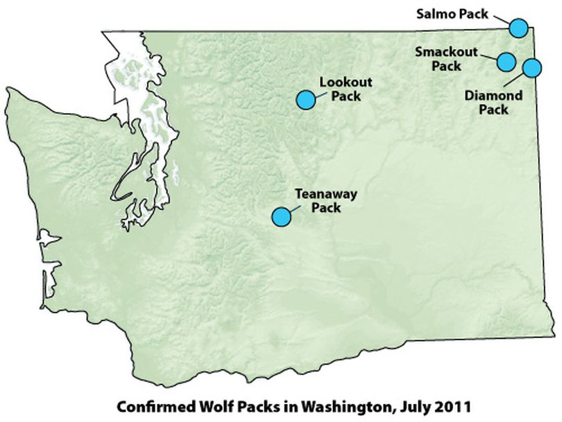 Maps shows general locations of five wolf packs documented in Washington (Washington Department of Fish and Wildlife)