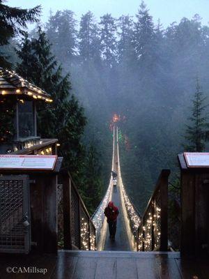 Capilano Suspension Bridge, Vancouver, BC (Cheryl-Anne Millsap / photo by Cheryl-Anne Millsap)