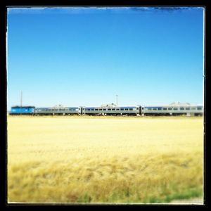 As much as modern travel involves airplanes, a train still strikes a special spot in many of us.  (Cheryl-Anne Millsap)