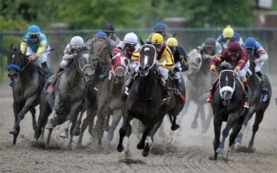 Rachel Alexandra, center, with jockey Calvin Borel, leads the field around the fourth turn at the Preakness Stakes.  (Associated Press / The Spokesman-Review)