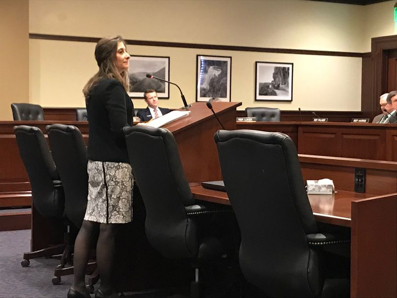 Rep. Heather Scott, R-Blanchard, pitches a new version of her bill to limit repeat bond elections at the House State Affairs Committee on Monday, Feb. 26, 2018. (Betsy Z. Russell)