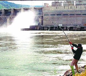 An angler hauls in a catch below Lower Granite Dam on the Snake River near Clarkston.   (File Associated Press / The Spokesman-Review)