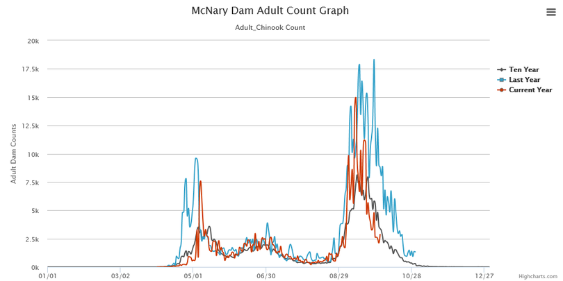 Counts of fall chinook over McNary Dam before the salmon enter the Hanford Reach of the Columbia River. (Fish Passage Center)