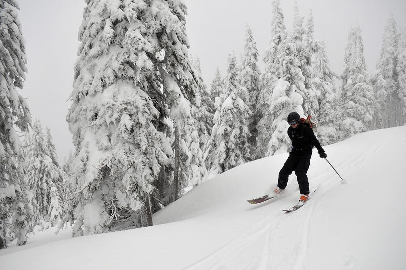 Brad McQuarrie, right, manager of Mt. Spokane Ski and Snowboard Park, skis down a road on the undeveloped Northwest side of the mountain on Friday, March 11, 2011.  The area is only used by advanced skiers who leave the patrolled boundaries of the park, but the ski area would like to open the Northwest face of the mountain in a proposed expansion by adding runs through timber and some open glades. (Jesse Tinsley / The Spokesman-Review)