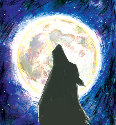 Outdoor writing contest: Wolves (Molly Quinn / The Spokesman-Review)