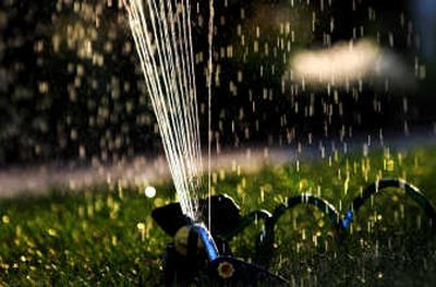 A sprinkler spits out water in a Spokane yard on a recent evening.   (Photos by RAJAH BOSE / The Spokesman-Review)
