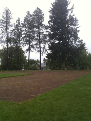The footprint for the Grant Park Community Garden has been cut out of the sod, just west of Grant Elementary School (Pia Hallenberg)