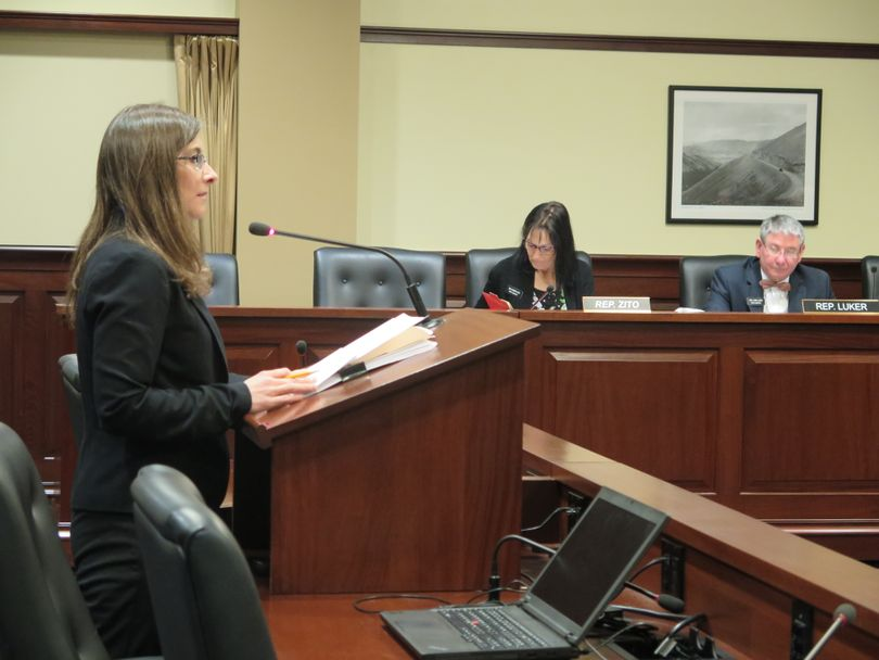 Rep. Heather Scott, R-Blanchard, addresses the House State Affairs Committee on Friday, Feb. 10, 2017 (Betsy Z. Russell)