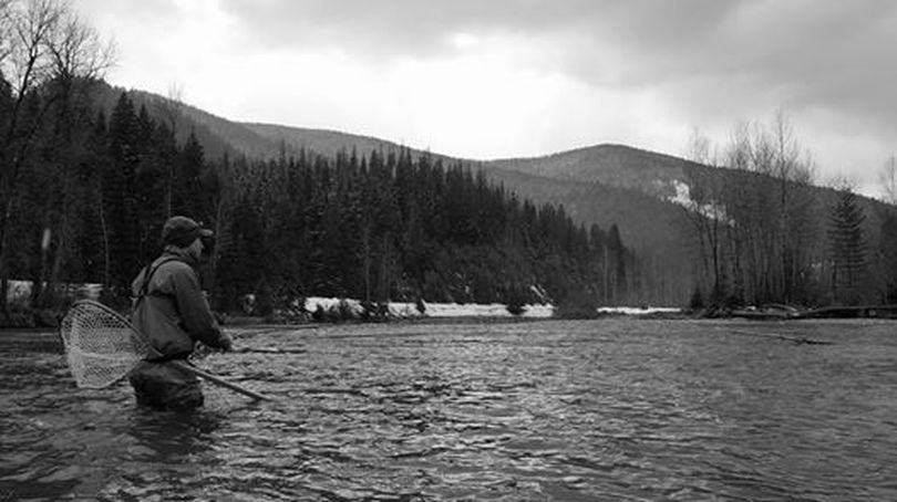 Fly fishing the Coeur d'Alene River on March 20, 2014. (Sean Visintainer / Silver Bow Fly Shop)