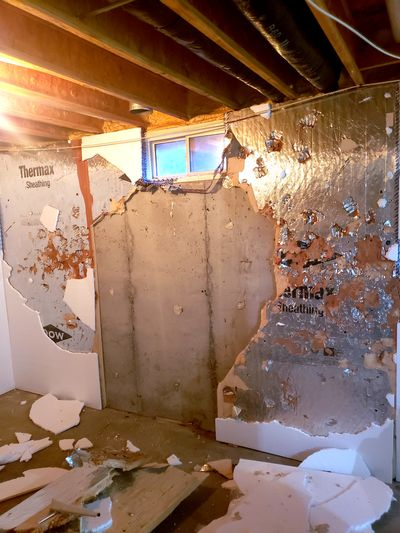 A young homeowner thought it would be a good idea to tear all this wonderful foam insulation off the wall.  (Courtesy)