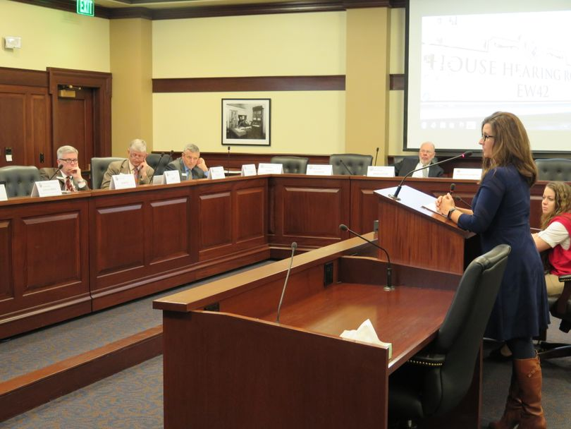 Megan Ronk, director of the Idaho Department of Commerce, testifies to the Legislature's joint Change in Employee Compensation Committee on Thursday. (Betsy Z. Russell)