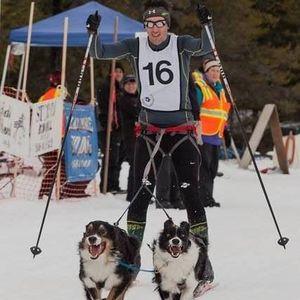Team Hanks -- Louie (Australian shepherd), Lucky (border collie), Mountie (greyster) and Dan Hanks (human) of Spokane qualified to compete in the 2017 International Federation of Sled Dog Sport World Championships in Haliburton, Ontario.  (Spokane Nordic Ski Association)