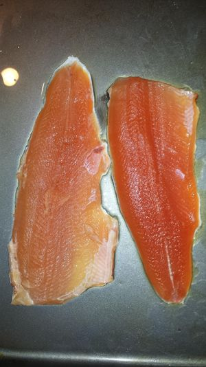 The pale fillet on left is from a rainbow trout that was stuffed with canned corn apparently from illegal chumming along the shoreline at Lake Roosevelt. The normal-colored fillet, right, is from a similar trout caught the same morning at the same place, but it had no corn in its gut. It wasn't clear whether the corn had anything to do with the discoloration. (Rich Landers / The Spokesman-Review)