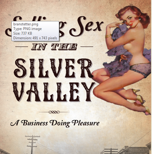 """Here's he cover of Heather Branstetter's book, """"Selling Sex in the Silver Valley: A Business of Doing Pleasure."""" (Courtesy: Heather Branstetter)"""