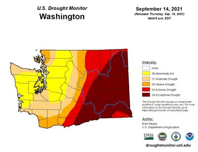 Spokane got more precipitation Saturday than it's gotten since January, but the weekend rains won't be nearly enough to make a major dent in the exceptional drought Eastern Washington's facing.  (U.S. DROUGHT MONITOR)