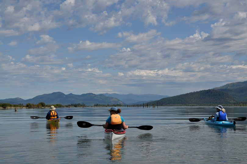 A sea kayak contingent of the Spokane Canoe & Kayak Club paddlers gathers on the Pend Oreille River downstream from Cusick, Wash., boat ramp to learn about wildlife habitat projects underway by the Kalispel Tribe and the Pend Oreille County PUD. (Rich Landers)